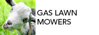 top gas push lawn mowers